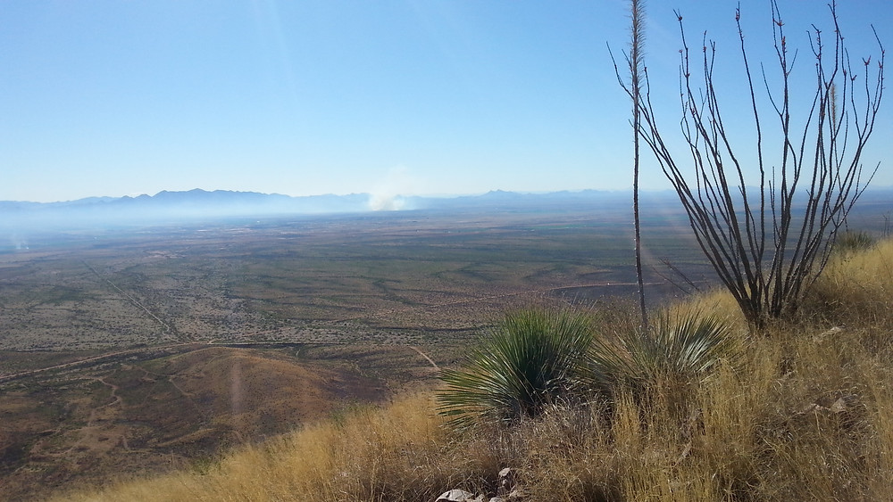 Looking east at some burns, hopefully controlled burns.