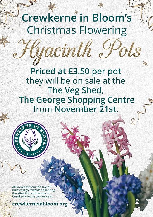 Hyacinth_Poster_socials.jpg