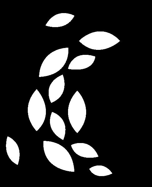 Bladeren-wit.png