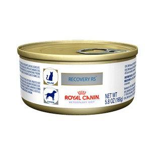 Royal Canin Lata Recovery