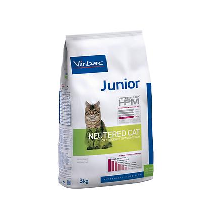 HPM  Junior cat