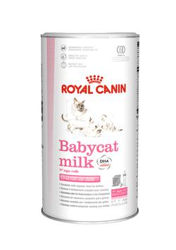 Royal Babycat Milk