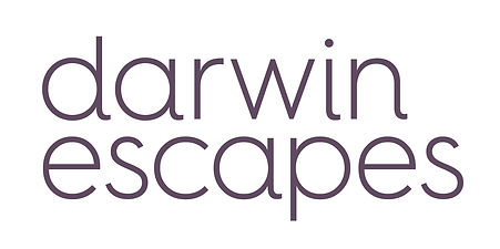 Darwin Escapes Logo Lock Up - RGB.jpg