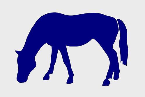 Horse Grazing Mylar Stencil sheet