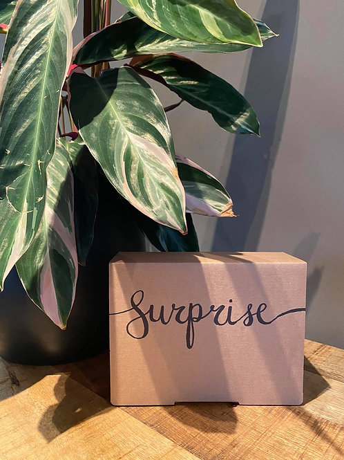 Mini surprisebox