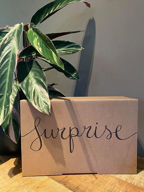 Luxe surprisebox