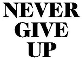 NEVER GIVE UP Rear Window Decal