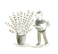 plant grow.jpg
