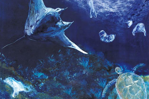 manta ray and plastic large.jpg