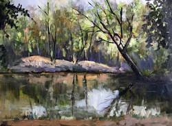 lake in Epping Forest 30x40cm £150