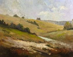 Richmond Park fields 40x50cm oil on canvas £150