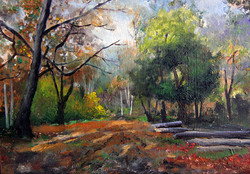 EPPING FOREST 3. SOLD