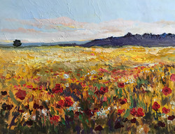 Poppies in Sussex UK 30x40cm oil on mdf £130 £130