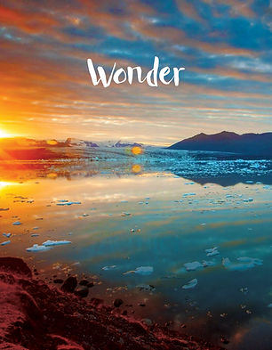 Wonder-art.jpg