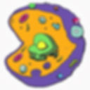 new cell ex logo poor.jpg