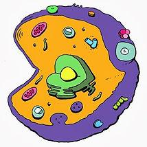 new cell ex logo poor.jpg