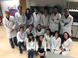 Cell EXPLORERS UL Team