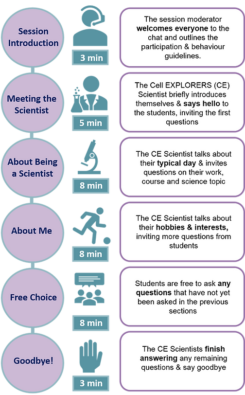 CEIAS chat structure infographic.png