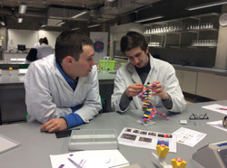 Cell EXPLORERS UL Team Training