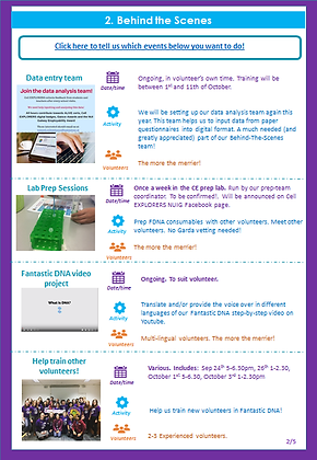 activities page 2.png