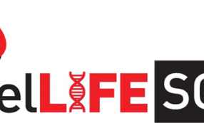 Public vote prize of €250 for ReelLife Science video. Vote Now!