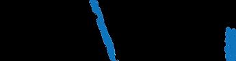 cvv2020-logo-01.png