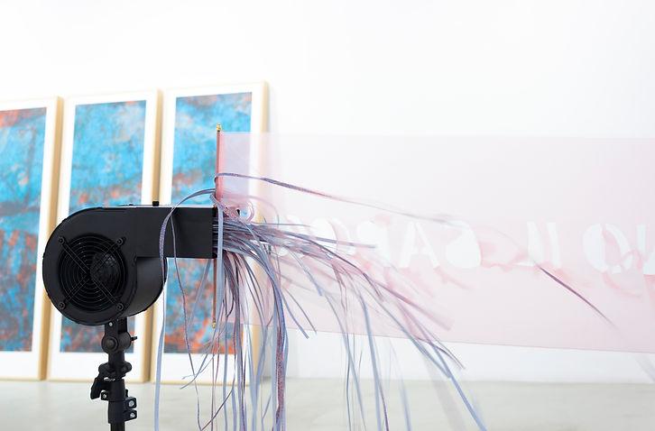 Dario Picariello_L'acqua le bagna come il vento le calpesta_LABS Contemporary Art_Bologna