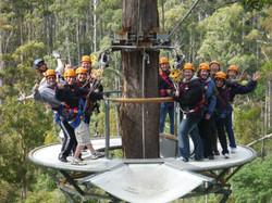 Hollybank Treetops group