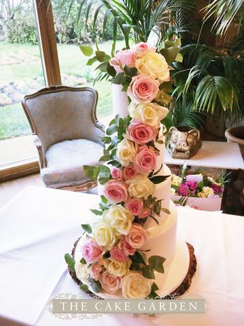 Fresh Rose Cascade