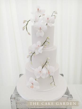 3 Tier Sugar Orchids