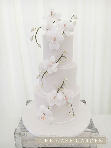 3 Tier Sugar Orchids