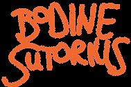 logo bodine oranje6.png