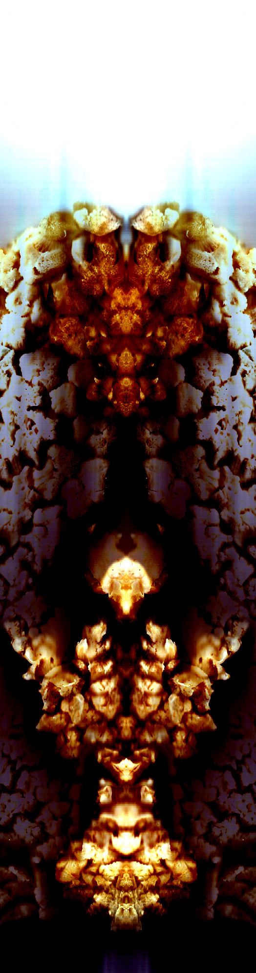 Nature Patterns -Internal Caves.jpg