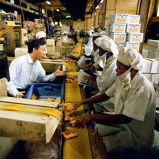 Yechang Wang is a Chinese electronic engineer arrived in Nigeria 15 years ago. He rules the production of the Newbisco factory that produces 70 tons of biscuits a day. The factory, built by the British in the 60's, went bankrupt and has been profitably relaunched by the Chinese in 2001.