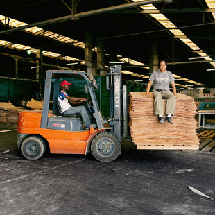 Chua Booan Lee, on the right, in the wood processing plant he manages for Sicofor. This plant has just been restored to working conditions by its new Chinese owners and inaugurated by Henri Djombo, the Congolese forestry minister in June 2007. It produces thin layers of the precious wood that will be then glued together to produce veneered which will be exported to China, the United States and Europe. The Congolese law requires timber companies to transform in the country 80% of the wood they log. But nobody respects this proportion, it is far more profitable to export the logs and process them in China.