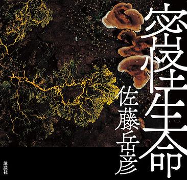 mikkai_cover_F1_OL_G2_H.jpg