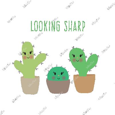 Look Sharp Cactus