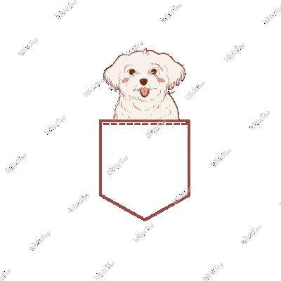 Smiling Doggo
