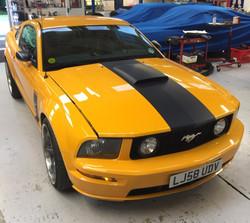 Mustang Matt Black stripe