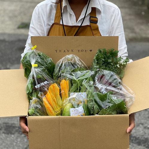旬の野菜セットL/100サイズ