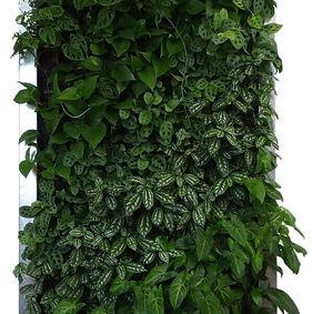 Follajes artificiales, para muros y paredes verticales