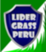 GRASS SINTETICO en PERÚ