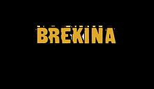 Logo_Brekina.png