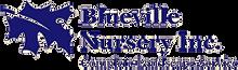 logo-4c6e4a1f.png