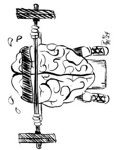 brain_fit0001