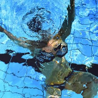 'Surface Dive'
