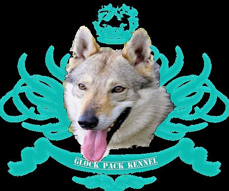 Base Logo Nera_edited.png