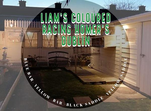 Liam logo.jpg