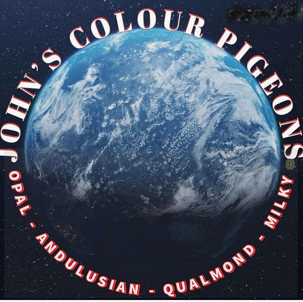 John's April 2021 logo.jpg