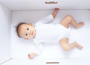 BabyBox bay box newborn pregnancy maternity gift